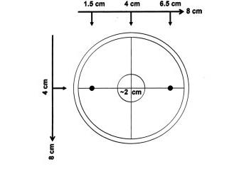 Chemotaxis plate diagram.jpg