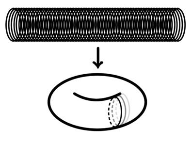 File:2011-06-16 figure1.jpg