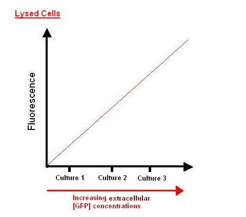 Calibration Curve5.JPG