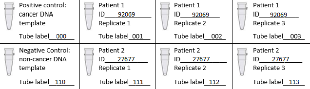 File:DNA Sample Set-up.jpg
