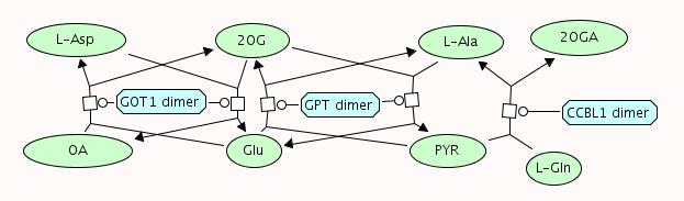 File:Reactome Pathway.jpg