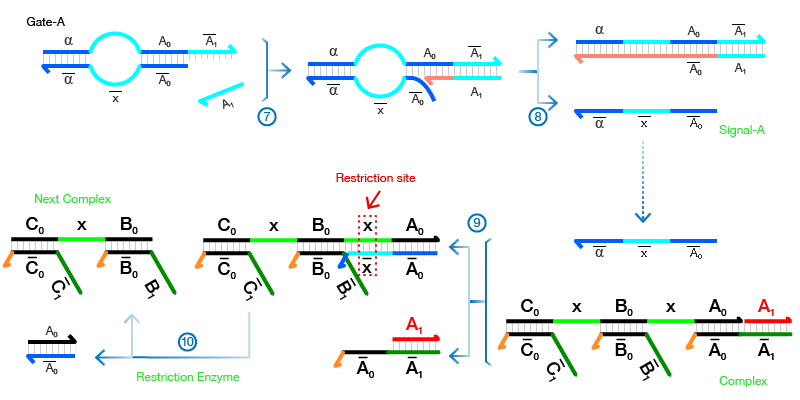 File:Figure3-01.png