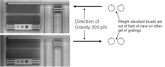 File:GC2 deflection images and diagram.PNG