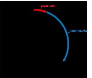 CcaR target (pCcaR) + scar + reporter (i13507: RFP), plasmid pSB1C3