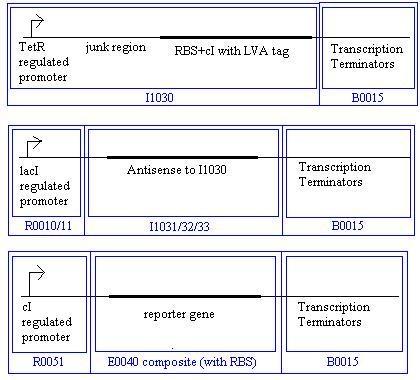 File:Threshold protein2.JPG