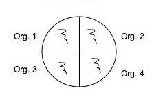 Quadrant plate.jpg