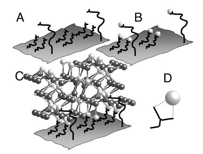 Crystal Nucleation.jpg