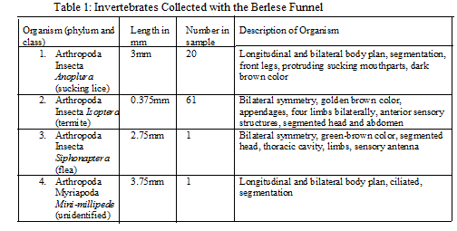 File:Inverts table.png
