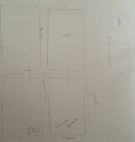 Sydney Murphy Transect Map.JPG