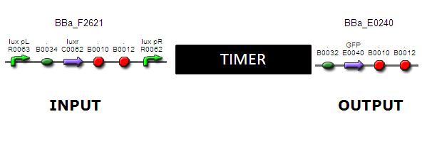 Timer3.JPG