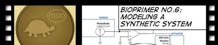 File:BioPrimer title bactphoto.png