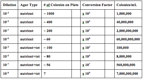 File:ColonyObservationTableTransect3.png