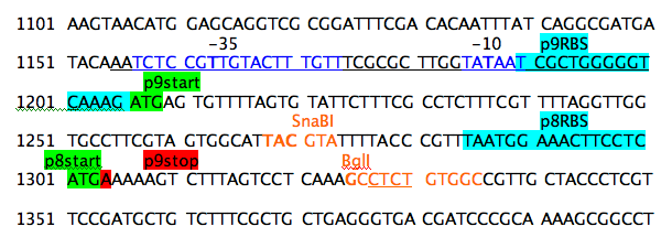 File:Annotation withRE Sna+Bgl.png