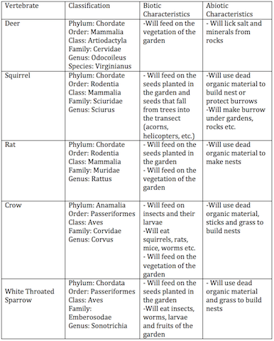 Image:Lab 5 Potential Vertebrate Table .png