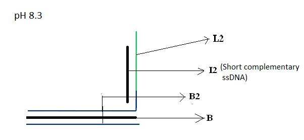 PH 8.3 - Module 2.png
