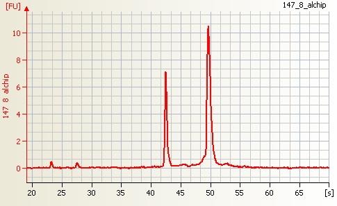 File:Human RNA good quality.jpg