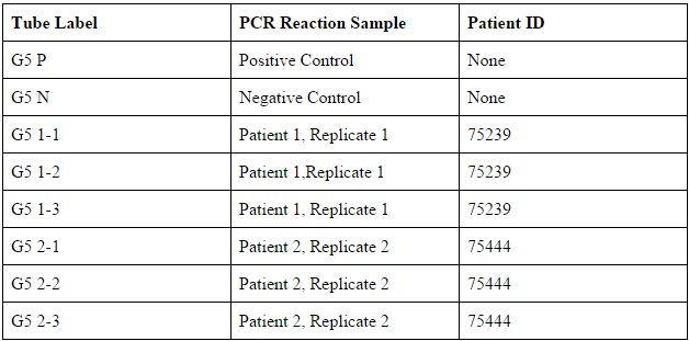 Table of PCR Tube Labels.jpg