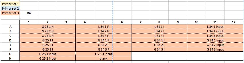 16.05.31 qPCR Plate 4 screen shot.png