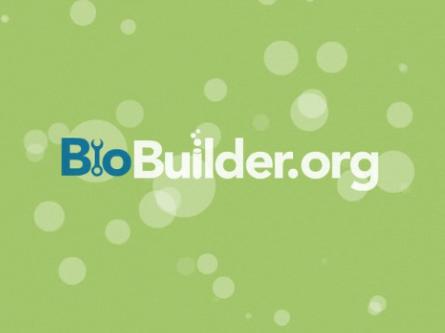 BioBuilder preview.png