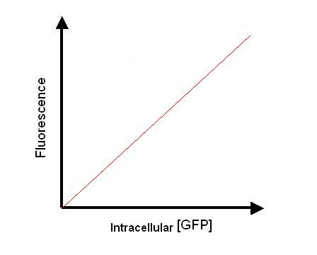 File:Calibration Curve1.JPG