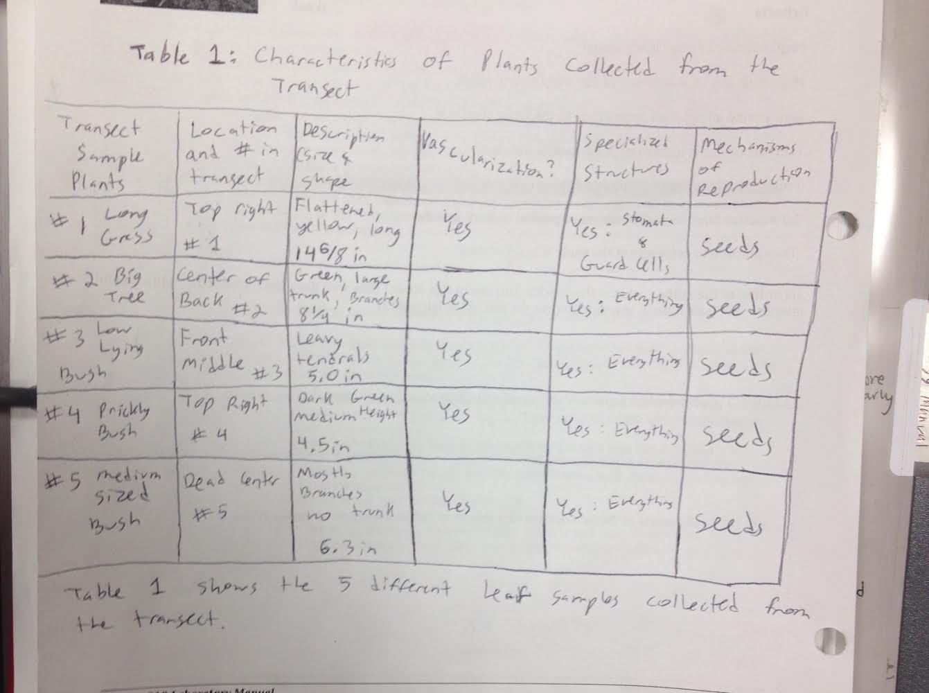 Table1pg52.jpg