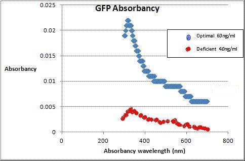 Absorbancy.JPG