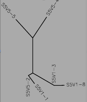 File:Tree S5 DNA.png