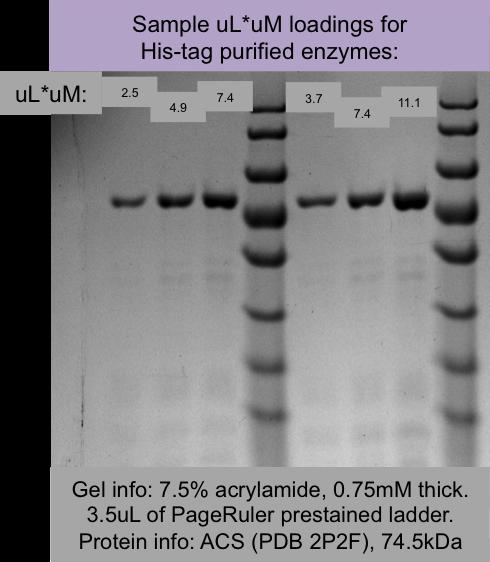File:2014 10 01 sample uLuM loadings of ACS 2P2F.png