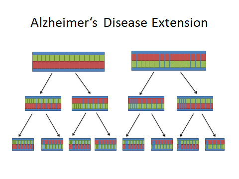 Image:Alzheimer's Extension DNA.jpg