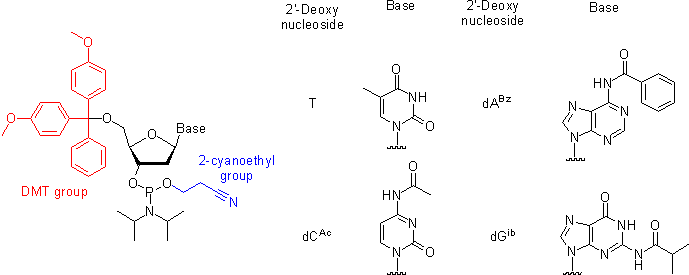 CH391L S12 Phosphoramidite.png