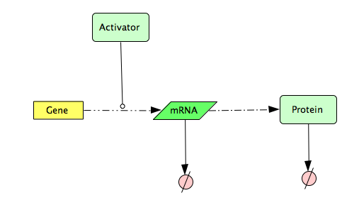 File:CellDesigner ActivatedGene Expression Network.png