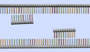 File:EssGen4-4 PrimersAnneal MID.jpg