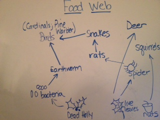 File:Food-Web-Shaffer.JPG