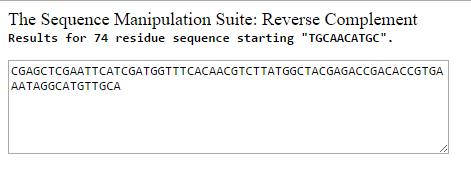 GP-13-kanC C ReverseCompliment.PNG