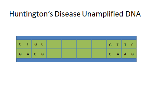Huntington's Unamplified DNA.jpg