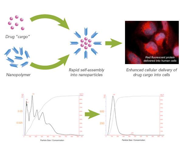 File:Nanopolymer.jpg