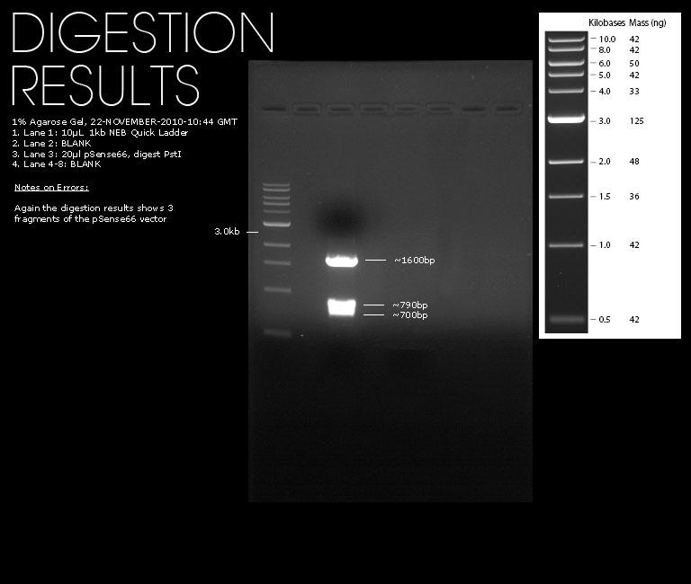 22112010-pSense66-Digests.jpg