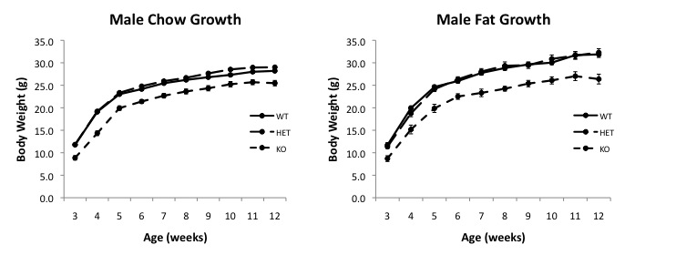 File:Male bw curves.jpg