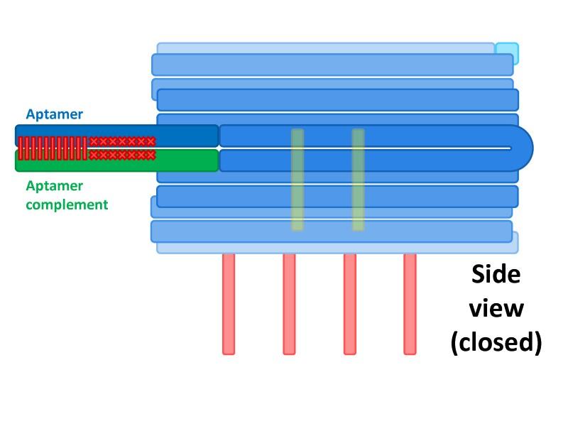 File:BM12 nanosaurs 5 locks side.jpg