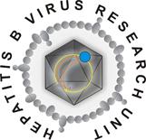 HBVRU Logo