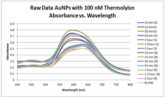 Raw Data AuNPs with 100 nM Thermolysin Absorbance vs. Wavelength.PNG