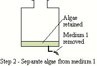 Hydrogen bioreactor schematic 2.JPG