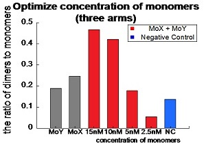 File:MoAY poly concentration2.jpg