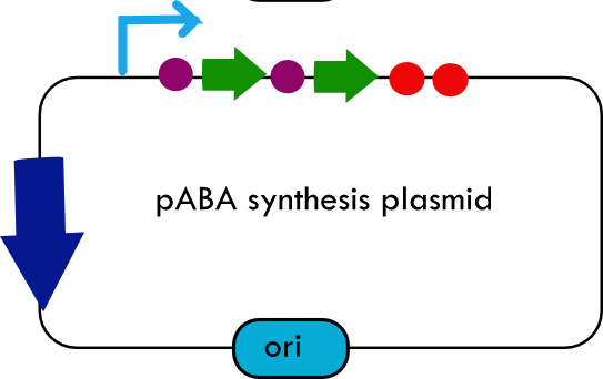 File:Systemdesign paba.png