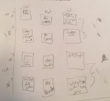 File:Table2.2.jpg