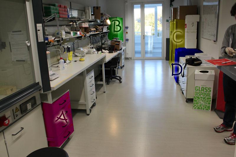 Biomod 2001 TUM Lab-Overview.jpg