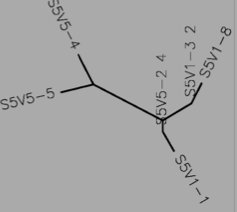 File:Tree S5 protein.png
