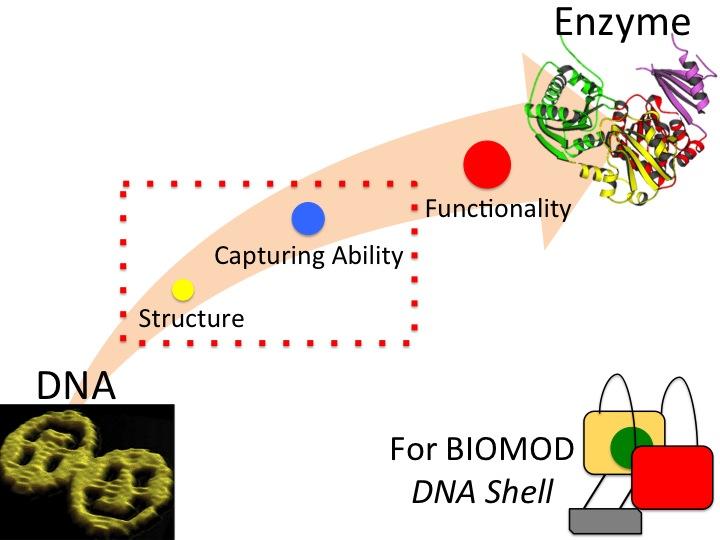 File:Biomod-2012-UTokyo-UT-Hongo-Idia-aim of research 1.jpg