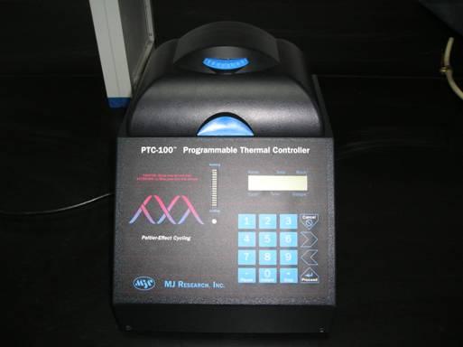 File:基因工程1.jpg