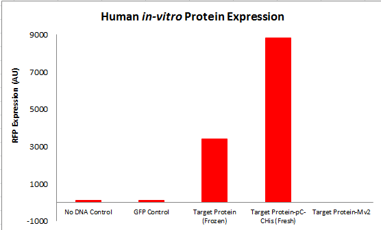 Image:RFP-In_vitro-PcTF_Expression.png‎